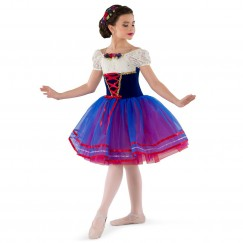 costume gallery this journey character ballet tutu costume