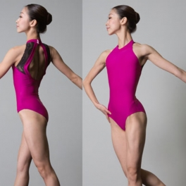 sonata flex 50 halter neck leotard
