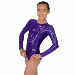 the zone ariel long sleeve gymnastics leotard