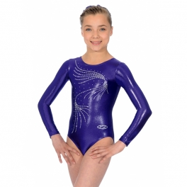 the zone orla long sleeve jewel leotard