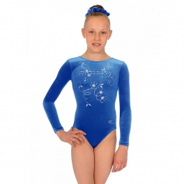 the zone panache long sleeve jewel leotard
