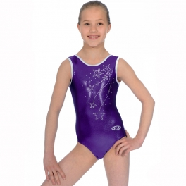 the zone ariel sleeveless gym leotard
