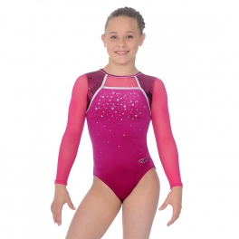 the zone destiny long sleeve gym leotard